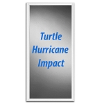 TURTLE HURRICANE IMPACT GLASS