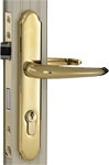 Wartian Eternity Lifetime Brass Mortis Lever Lock